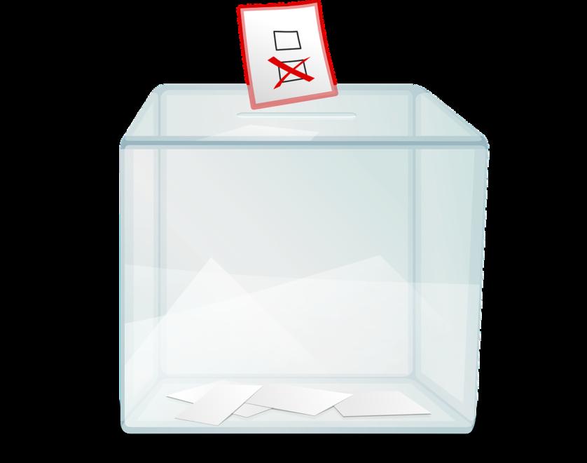 kultura wyborów